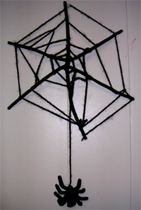 The finished spider web