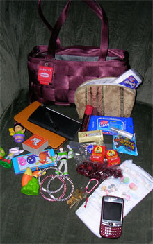 my purse (and contents)